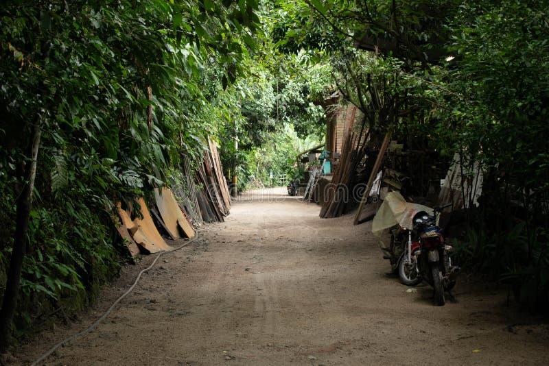 暗藏的密林路在哥伦比亚 免版税库存照片