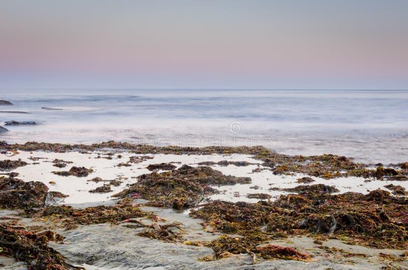 暮色海洋 免版税图库摄影