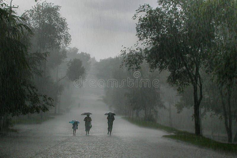 暴雨 免版税库存照片