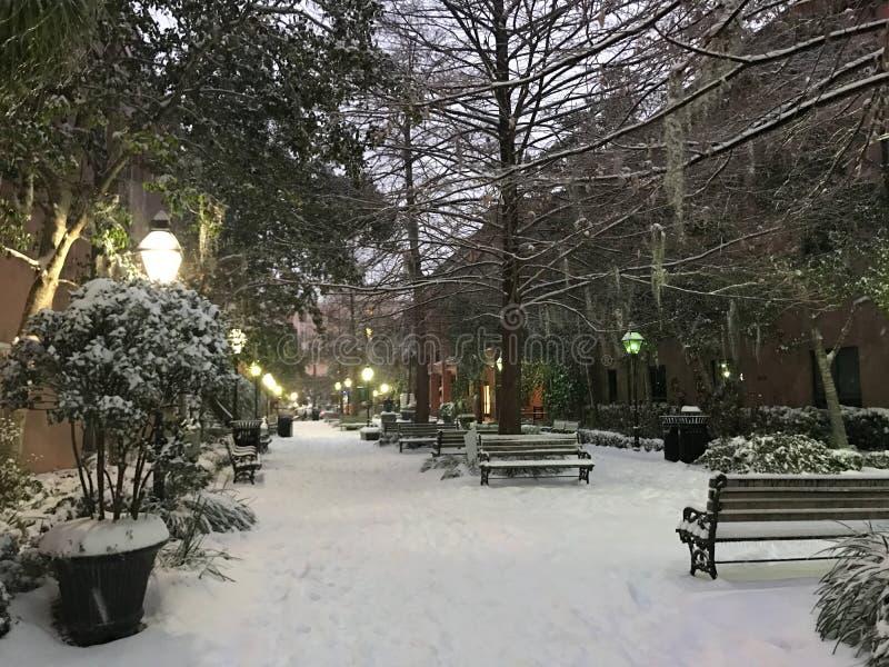 暴风雪在查尔斯顿, SC 免版税库存图片