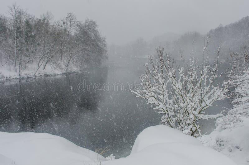 暴风雪在河岸的森林里 免版税库存图片