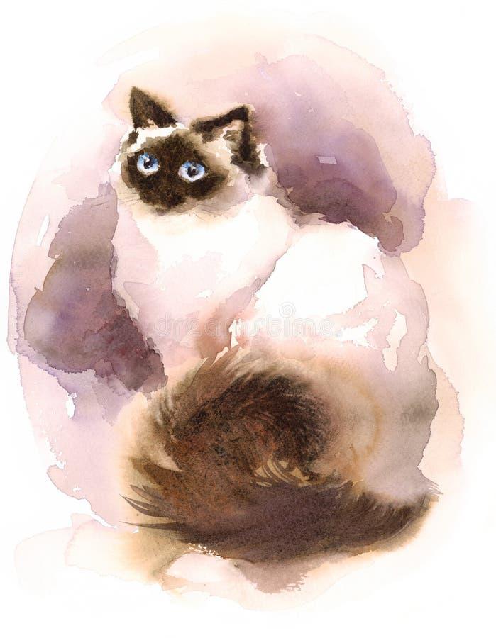暹罗猫水彩动物手画宠物的例证 库存例证