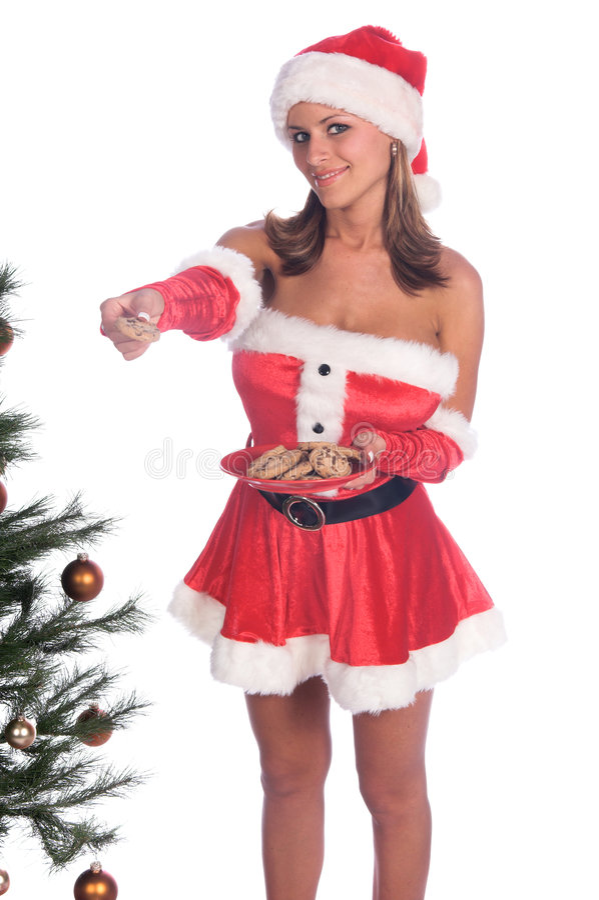 曲奇饼s圣诞老人夫人 免版税库存照片