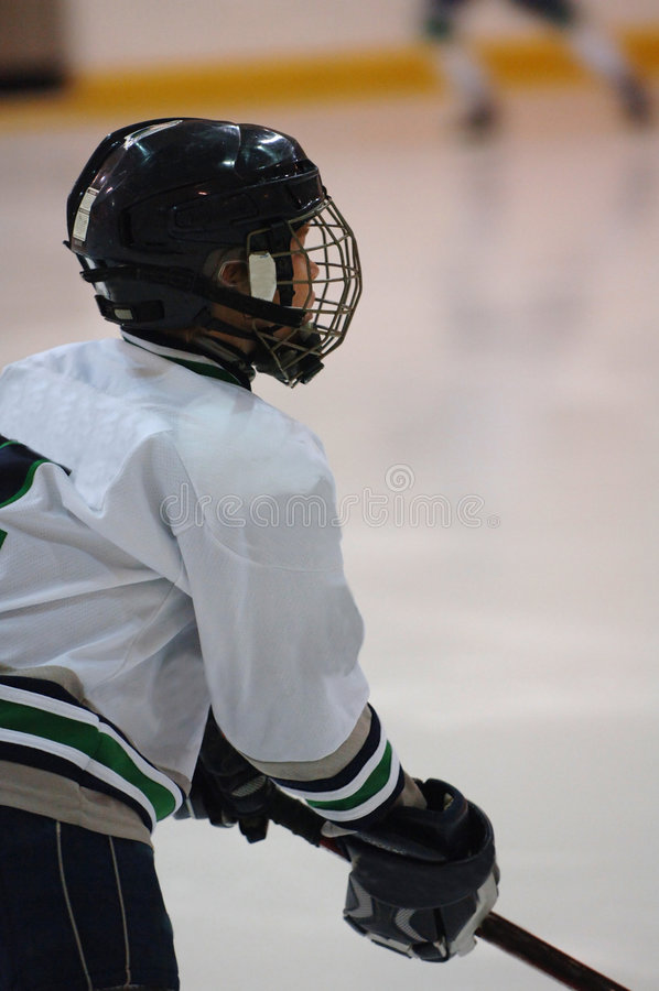 曲棍球冰球员配置文件 免版税图库摄影