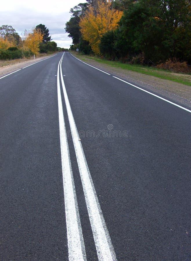 曲线路 图库摄影