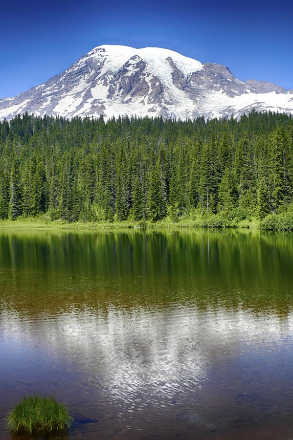 更加多雨的Mt在Reflection湖反映了 库存图片
