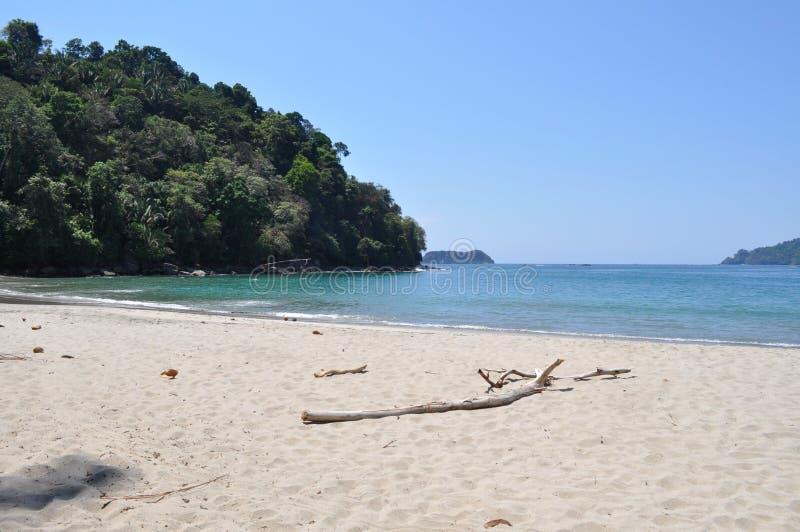 曼努埃尔・安东尼奥海滩,哥斯达黎加 库存图片