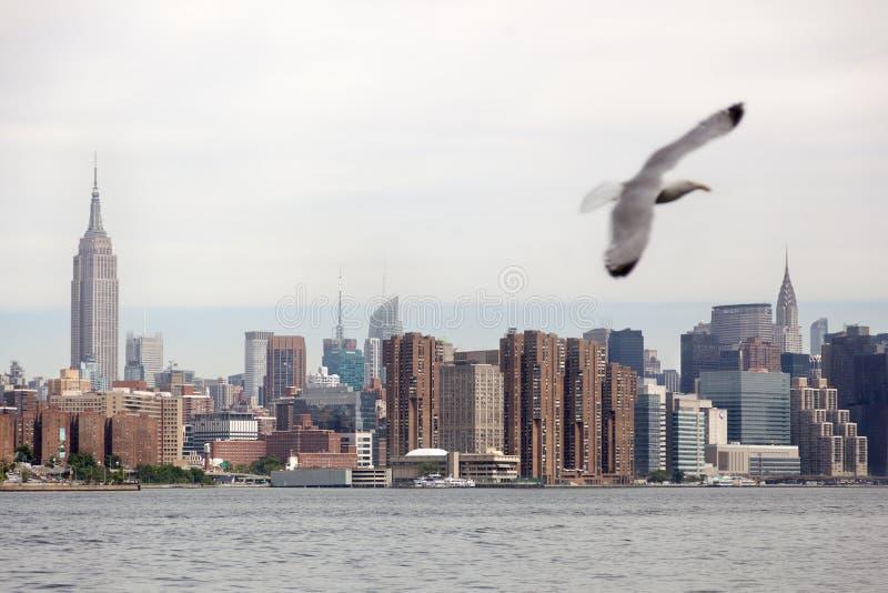 曼哈顿看法  库存图片