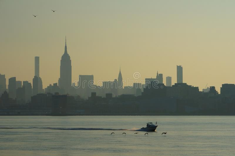 曼哈顿,纽约摩天大楼都市风景,有低切削刀赛跑和鸟飞行的在前面水上 图库摄影