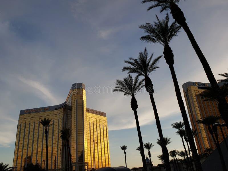 曼德勒海湾旅馆的外视图在拉斯维加斯,日落的内华达  免版税库存图片