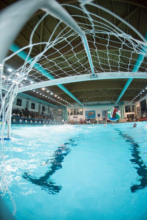 曼托瓦- 2月19 :在网的球在比赛BPM体育管理-佛罗伦萨(意大利首放同盟) 201 2月19日, 图库摄影