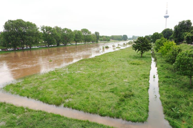 曼海姆,德国- 2019年5月22日:河内卡河洪水和水位高 库存照片