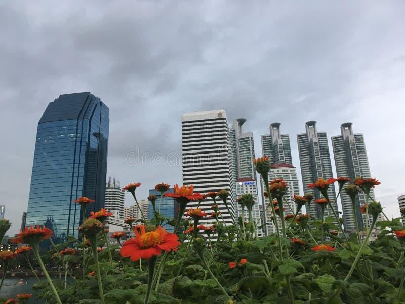 曼谷视图 库存图片