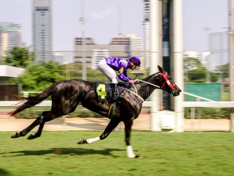 曼谷,泰国- 2019年2月24日:骑师和赛马在行动,加速的快动作迷离 库存图片