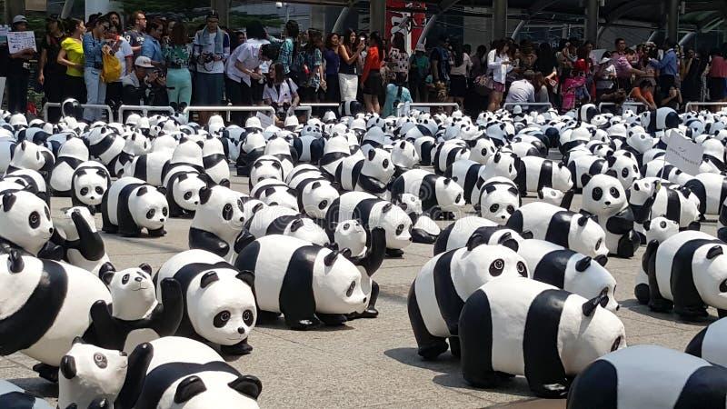 曼谷,泰国- 2016年3月8日:1600只熊猫在Th的世界游览 免版税库存图片