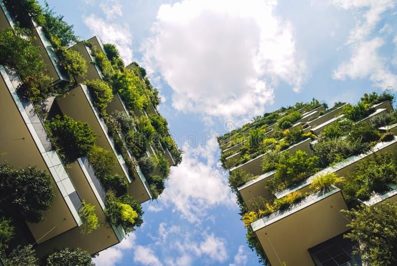 最佳的高楼全世界和快速的云彩 库存照片
