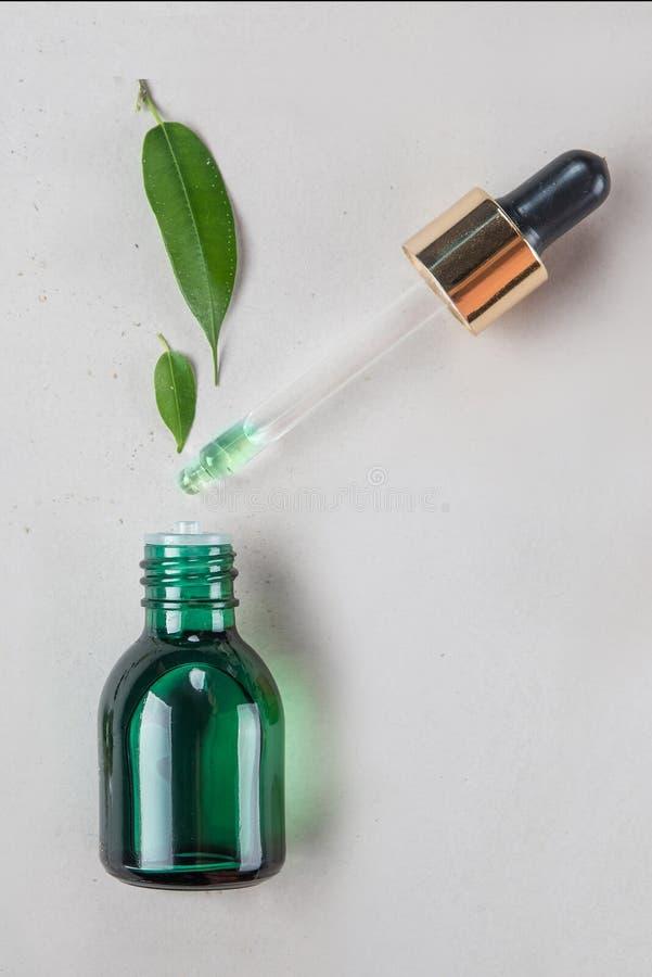 最小的样式 菜萃取物,在一个小瓶的精油有吸移管的 自然化妆用品的概念 平的位置 库存图片