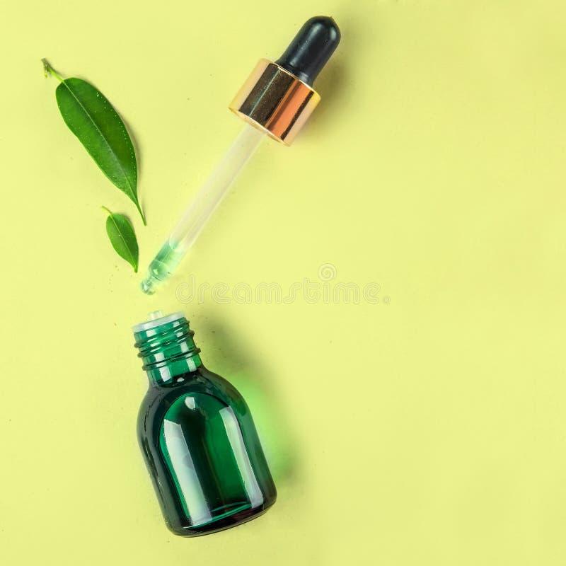 最小的样式 菜萃取物,在一个小瓶的精油有吸移管的 自然化妆用品的概念 平的位置 免版税库存照片