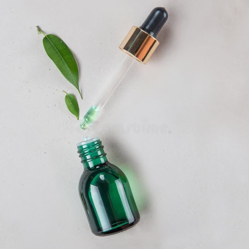 最小的样式 菜萃取物,在一个小瓶的精油有吸移管的 自然化妆用品的概念 平的位置 免版税图库摄影