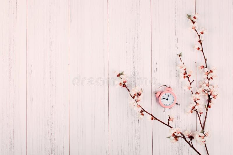 最小的现代背景,横幅 与花和桃红色闹钟的开花的樱桃分支在与拷贝的轻的木背景 免版税库存图片