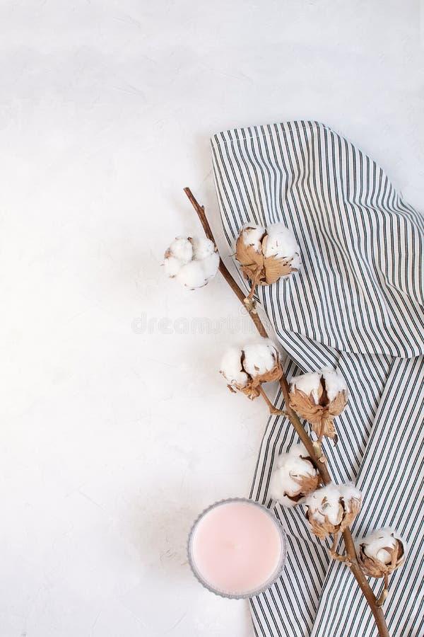 最小的秋天装饰概念-干棉花分支,蜡烛 库存图片
