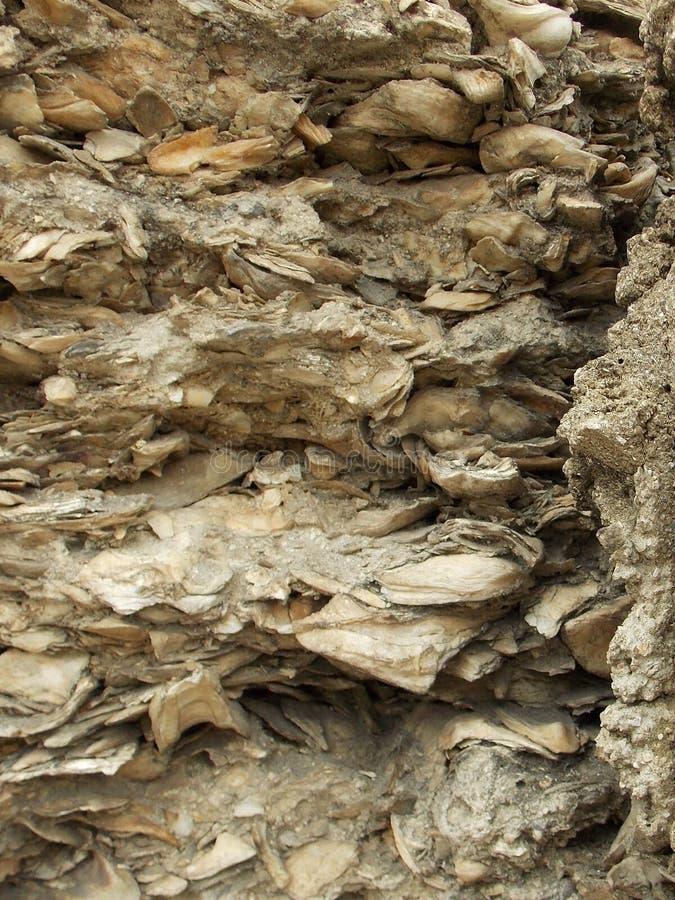 最旧的塔皮亚墙壁在美国 图库摄影