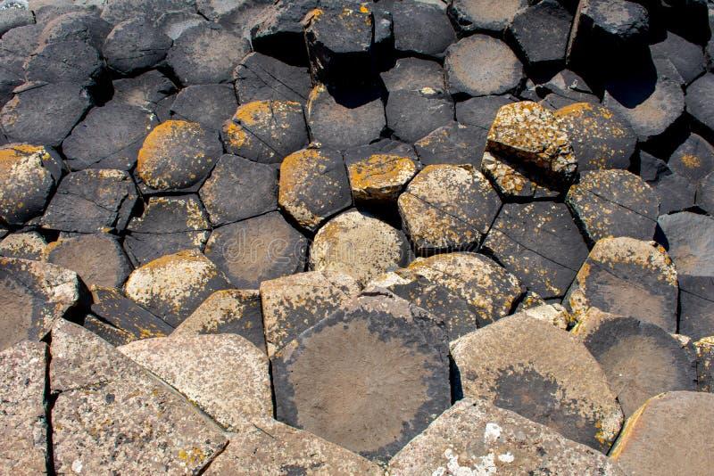 最普遍巨人的堤道和最著名的吸引力在北爱尔兰 六角形在火山爆发以后的玄武岩专栏 库存照片