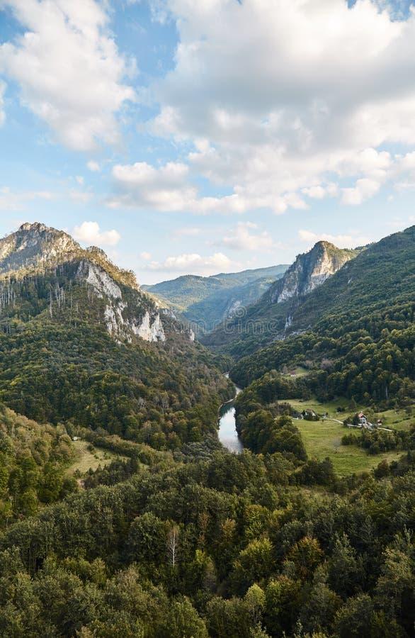 最深的峡谷在欧洲 塔拉河峡谷 黑山 免版税库存图片