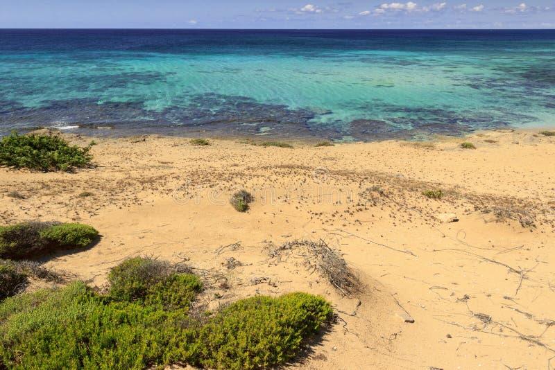 最美丽的海滩意大利:坎波马里诺沙丘公园 免版税库存照片