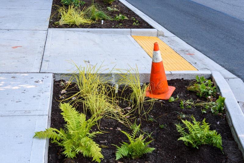 最近种植了中间在遏制和新的边路之间、新鲜的植物和土和pvc灌溉管子和连接器 库存照片
