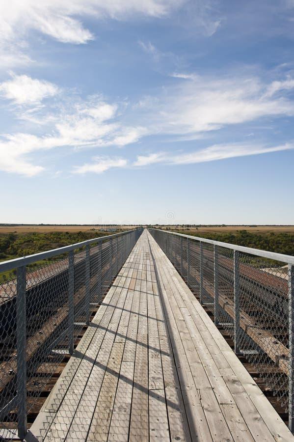 最长的步行桥在加拿大 免版税库存照片