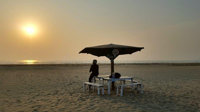 最长的海海滩自然 库存照片