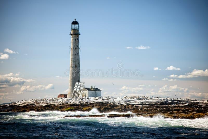 最高的灯塔小插图在新英格兰处于低潮中总和的 库存图片