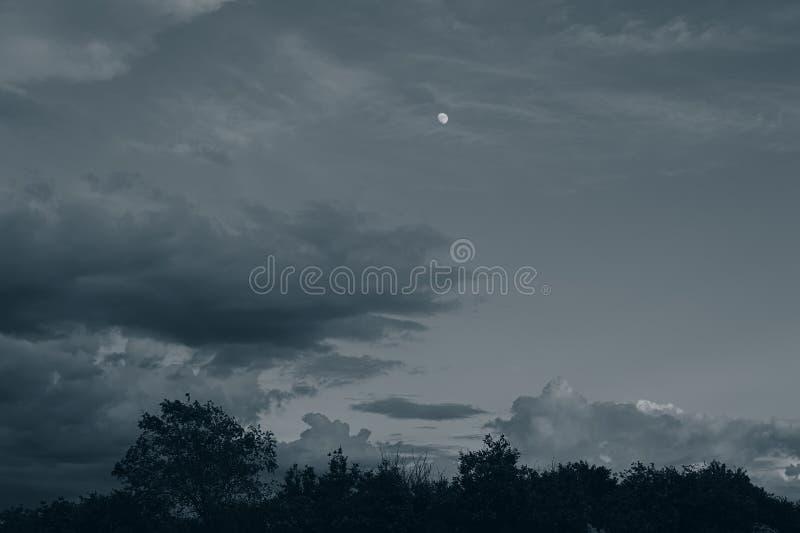 月亮、云彩和森林在晚上在5月 农村的横向 库存照片