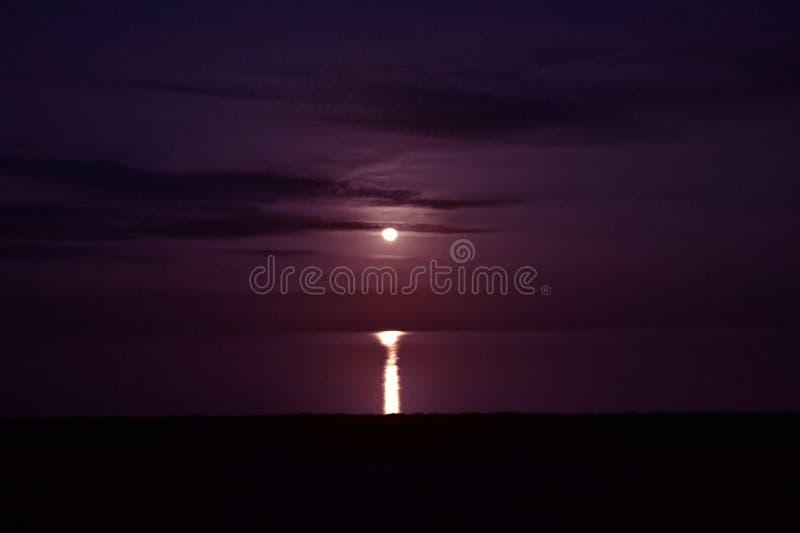 月亮和月光海上 免版税库存图片