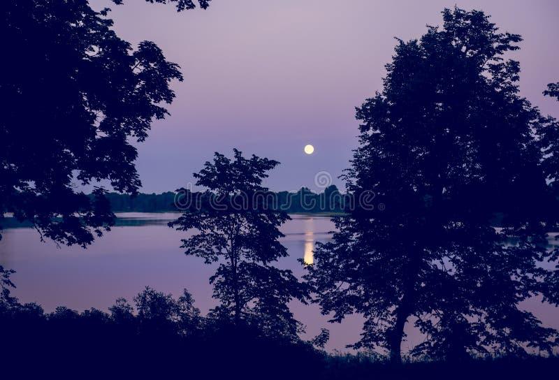 月亮和湖夜风景  免版税库存照片