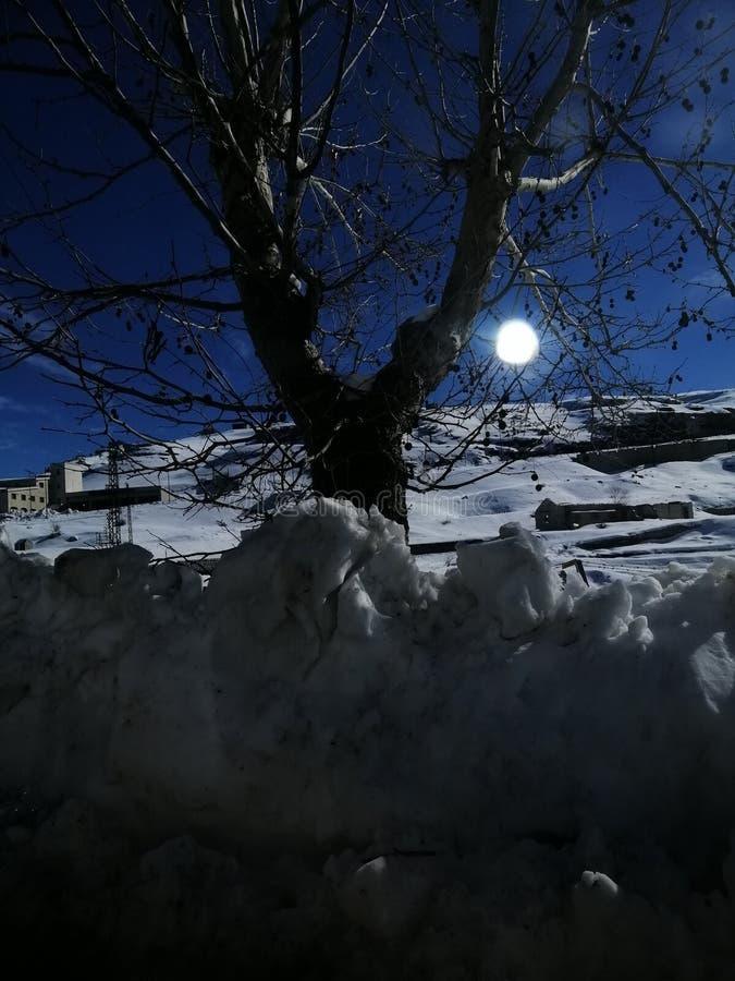 月亮和雪反射,早晨爱 库存照片