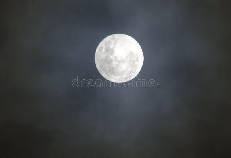 月亮夜美好的爱nightmoon ovemoon 库存图片