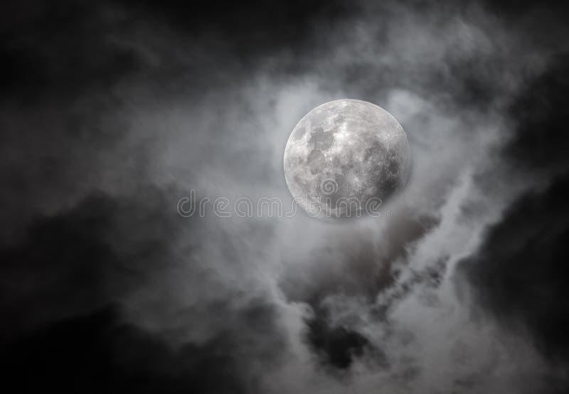 月亮夜 免版税库存照片
