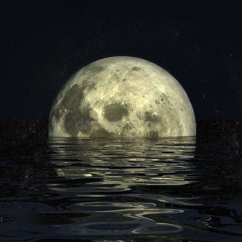 月亮晚上2 库存照片