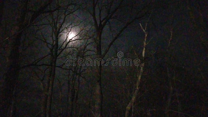 月亮的伸手可及的距离 图库摄影