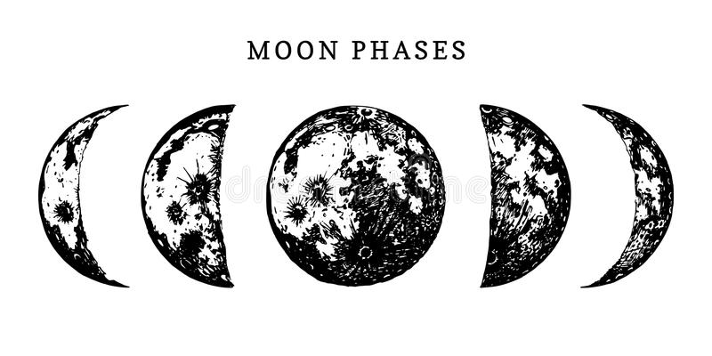 月亮逐步采用在白色背景的图象 周期的手拉的传染媒介例证从新的到满月 图库摄影