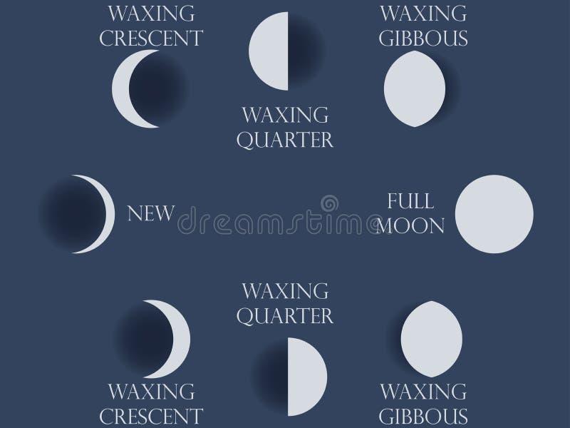 月亮阶段 从新月的整个周期到充分 库存例证