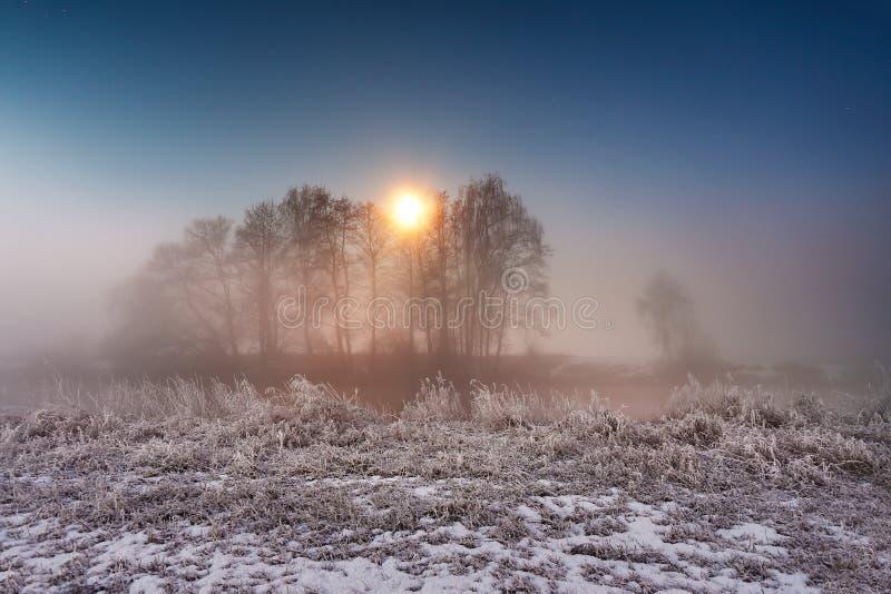 月光冬天夜 雾和薄雾在多雪的冬天劈裂 库存图片