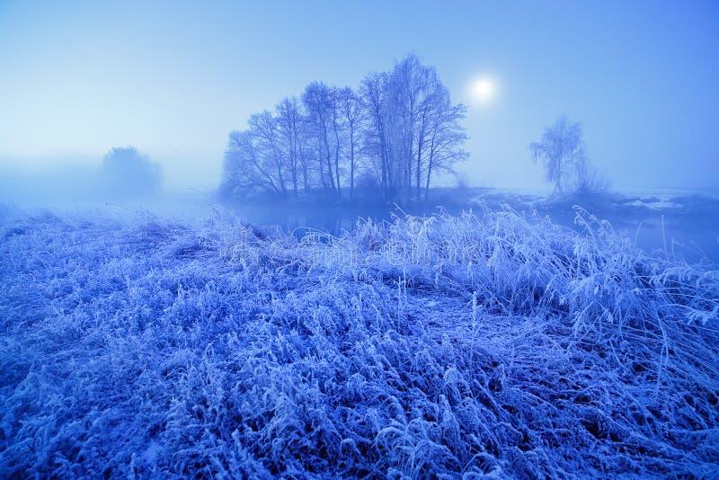 月光冬天有薄雾的夜 雪和霜在草 库存图片
