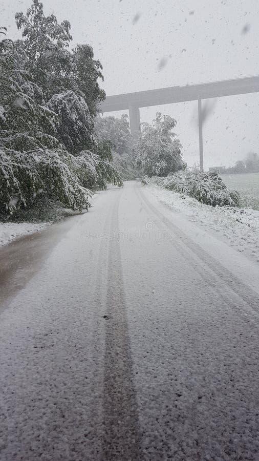 11 4月在奥地利 库存图片