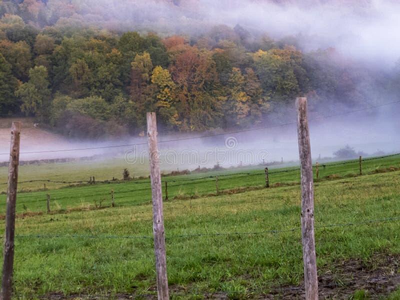 10月在比利时领域的晚上薄雾在一农业操刀后 库存照片