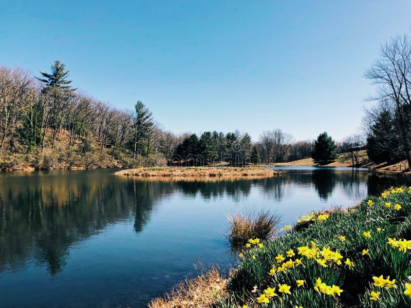 月桂树土坎在litchfield康涅狄格的春天视图 库存照片