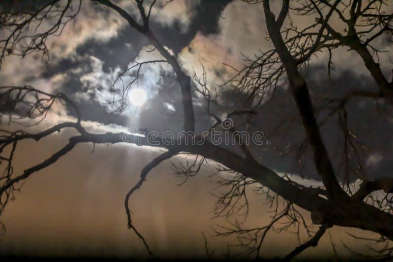 满月,在秘鲁乡下 免版税库存图片