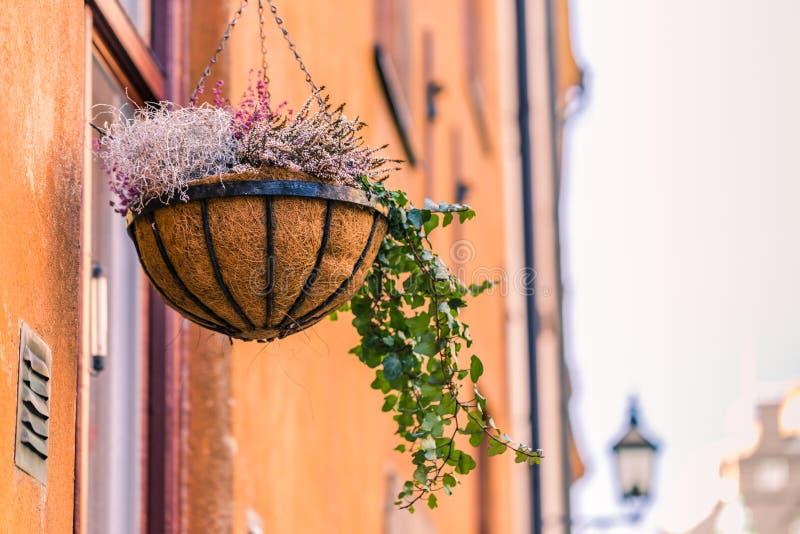 2017年1月21日:一个花瓶在一个阳台上在老镇Sto 图库摄影